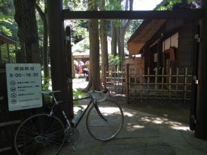 芦花公園1